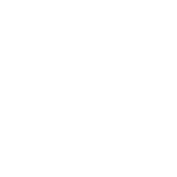 The Caravaner's in-game icon.