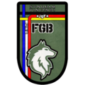 FGB logo.png