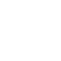 The Small Shipping Container's in-game icon.
