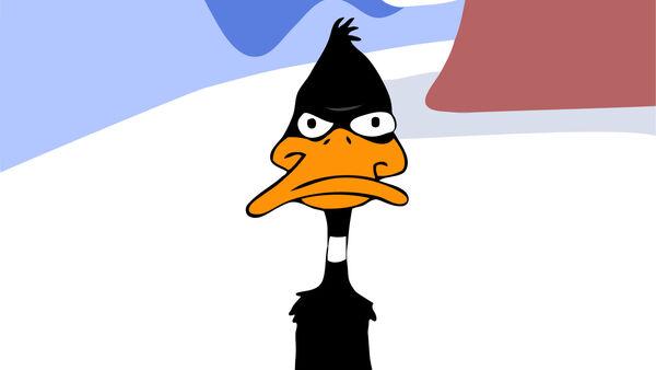 Daffy.jpg