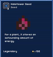 Haleflower seed.PNG