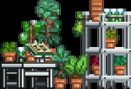Botany Lab-0.png