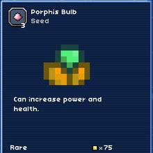 Porphis bulb.PNG