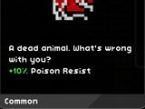 A Dead Animal