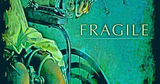 Fragile1.jpg