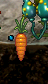 Carrote4.png