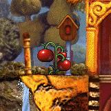 Tomatesc1