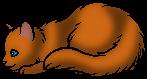 Крапинка (Котёнок)
