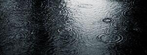 Чёрный дождь 4