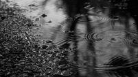 Чёрный дождь 2