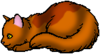 Авраносветик (Котёнок)