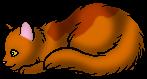 Авраносветик (Котёнок).png