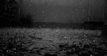 Чёрный дождь