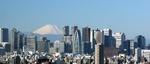 View of Shinjuku skyscrapers and Mount Fuji
