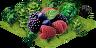 Ts.berries2