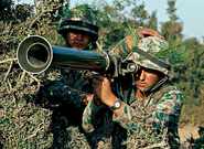 Special Unit Attacks