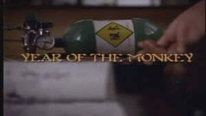 Year of the Monkey title card.jpg