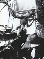 Fright Night 1985 BTS Vampire Bat