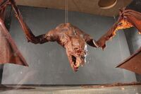 Jerry Dandrige Bat Auction pre-restoration