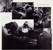 Fright Night 1985 Roddy McDowall and Kermit the Bat