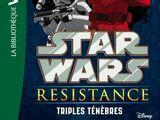 Triples ténèbres (roman)
