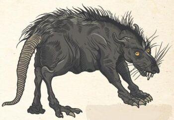 Rat Womp