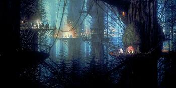 Arbre Redwood