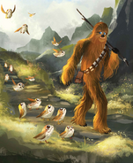 Chewie and the Porgs cover art