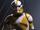 Commandant clone non-identifié (13ème Bataillon)