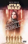 Soulevement rebelle 1221