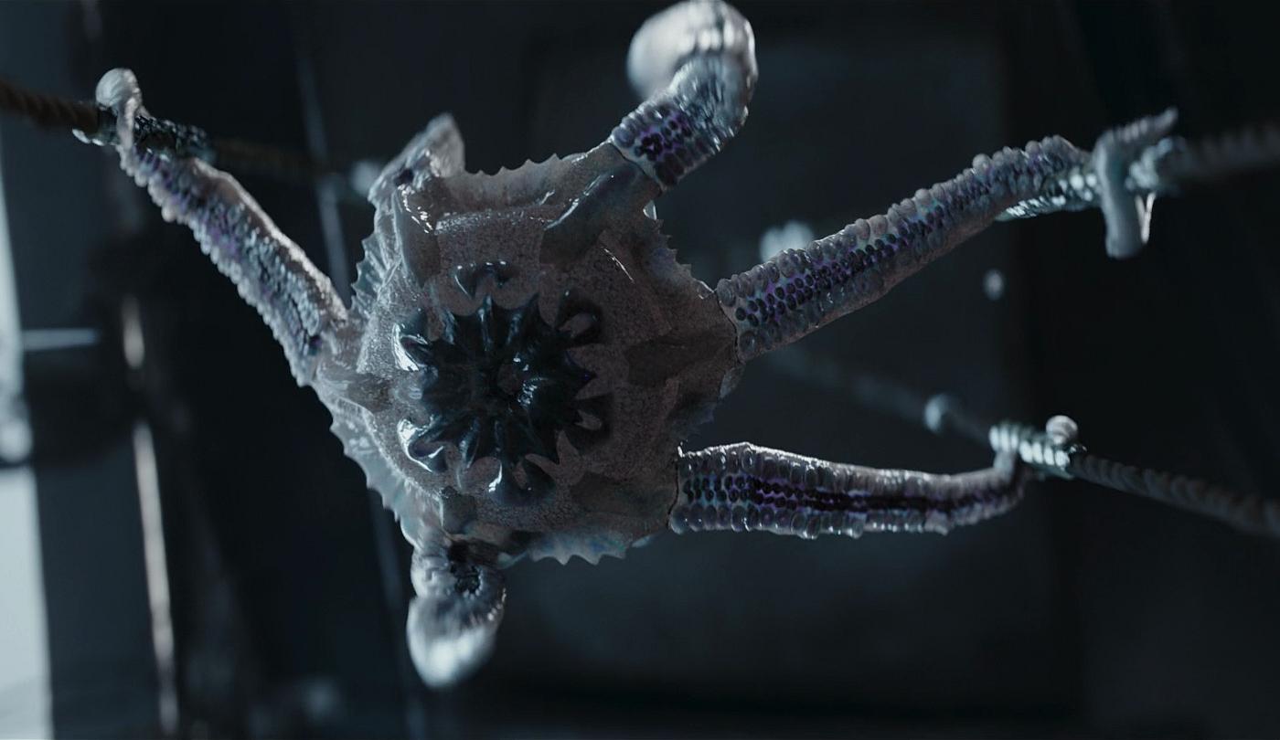 Créature à tentacules non-identifiée (Trask)