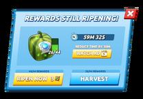 Ripen Box.png