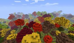 Autumn Woods.jpg