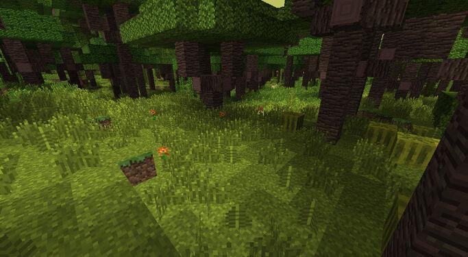 BiomesOPlenty Tropical Rainforest 2.jpg