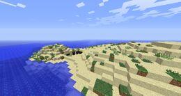 Overgrown Beach.jpg