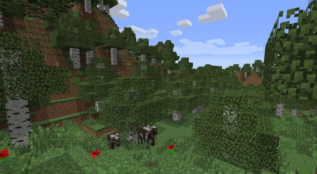 BiomesOPlenty Birch Forest 2.jpg