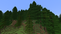 Biome Temperate Rainforest (Redwoods).png