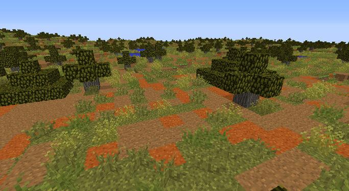 BiomesOPlenty Outback 2.jpg