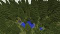 BiomesOPlenty Temperate Rainforest 1.png