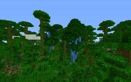 Extreme Jungle.jpg