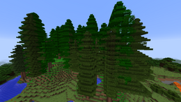 Biome Lush Redwood Forest.png