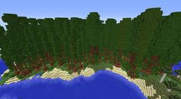 BiomesOPlenty Redwood Forest 1.jpg