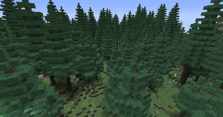 BiomesOPlenty Coniferous Forest 1.png