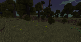 Biome Oak Savanna.png