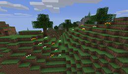 Green Hills.jpg