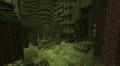BiomesOPlenty Temperate Rainforest 2.png