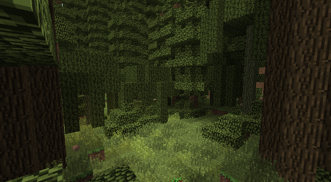 BiomesOPlenty Temperate Rainforest 2.png