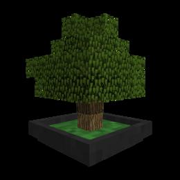 Modicon Bonsai Trees.png