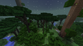 Biome Dense Twilight Forest.png