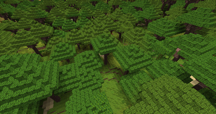 BiomesOPlenty Tropical Rainforest 1.jpg